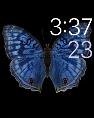 Apple Watch - motion watch face